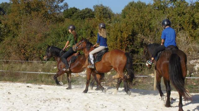école équitation